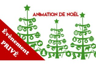 Animation Arbre de Noël – Privé